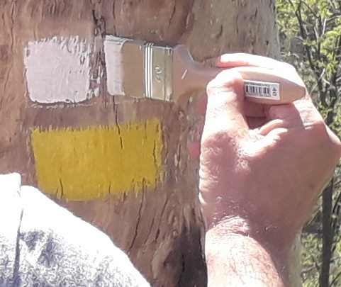 mantenimiento de rutas y senderos en bizkaia alava araba gipuzkoa cantabria burgos soria asturias