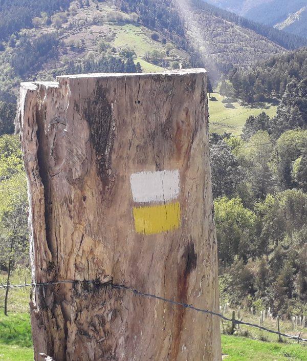 mantenimiento de rutas y senderos en bizkaia alava araba gipuzkoa cantabria burgos soria rioja asturias