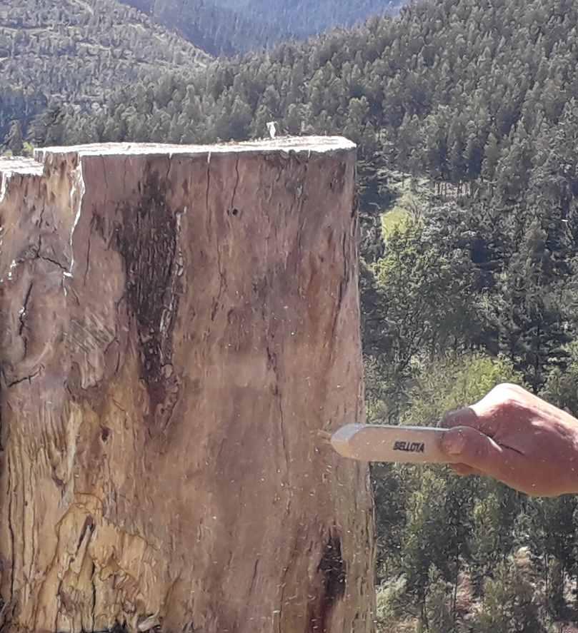 mantenimiento de senderos en bizkaia alava araba gipuzkoa cantabria burgos soria